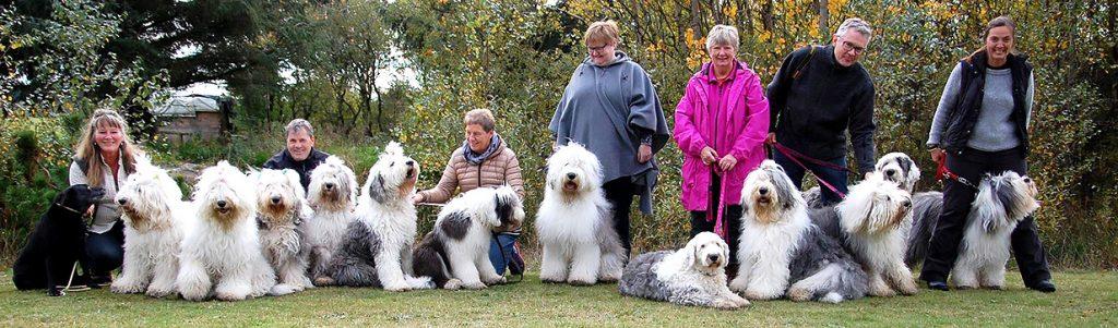 Blokhus-Hune-hundefestival